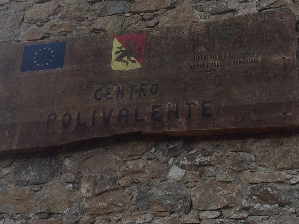 Assemblea Lavoratori Forestali (Colli San Rizzo, 3 novembre 2017)